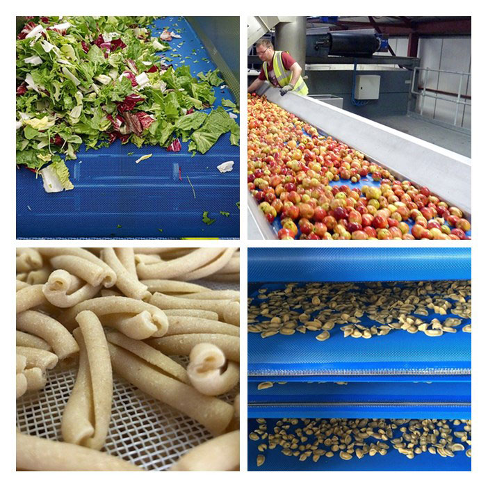 Linear Screen Mesh Conveyor Belt in the Washing Process of the Food Industry